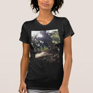 Elfensattel-Pilz T-Shirt