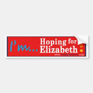 Elizabeth Waren für PräsidentenAutoaufkleber 2016 Autoaufkleber