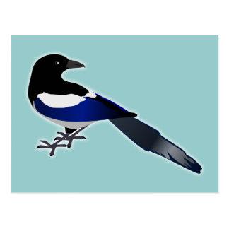 Elster Magpie Postkarten