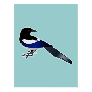 Elster Magpie Postkarte