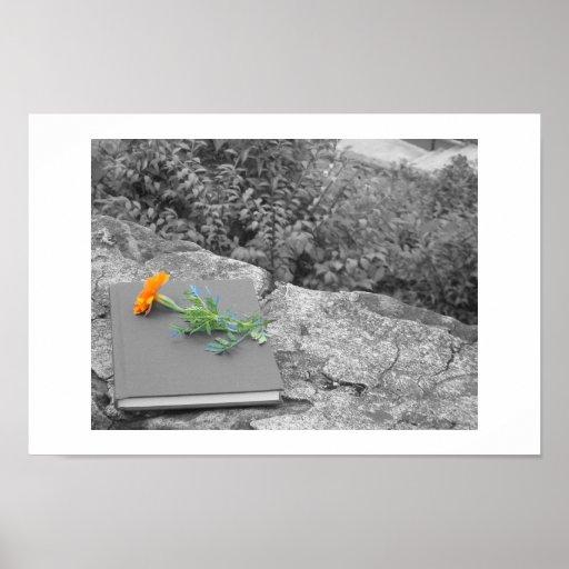 Emo Blume Plakat