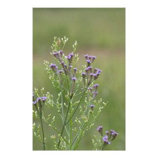 Empfindliche Lavendel-Verbene-Wildblumen Briefpapier