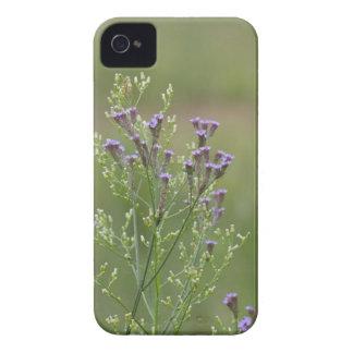 Empfindliche Lavendel-Verbene-Wildblumen iPhone 4 Etuis