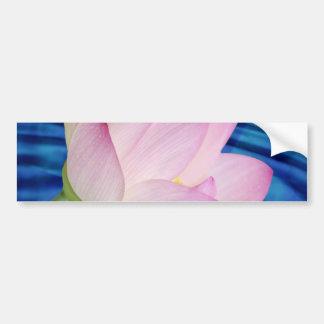 Empfindliche Lotos-Blume und -bedeutung Autoaufkleber