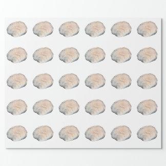 Empfindliche Pastellmuschel-Muschel Geschenkpapier