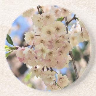 Empfindlicher Frühling blüht BlumenUntersetzer Getränkeuntersetzer