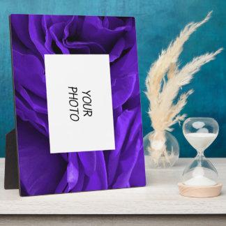 Empfindliches helles lila Rosen-Blumen-Foto Fotoplatte