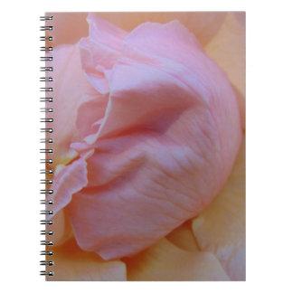 Empfindliches Rosa Spiral Notizblock
