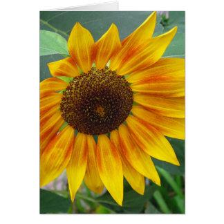 Ende der Sommer-Sonnenblumekarte Karte