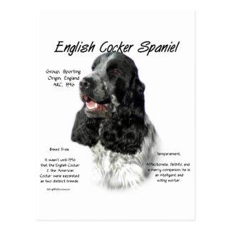 Englisch Cocker spaniel (parti/b&w) Postkarte