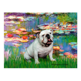 Englische Bulldogge 9 - Lilien 2 Postkarte