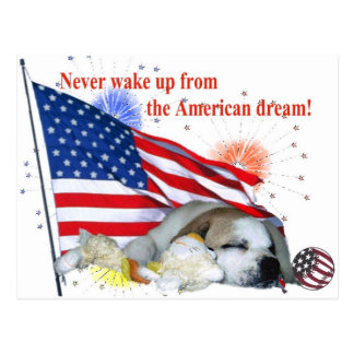 Englische Bulldogge - amerikanischer Traum Postkarte