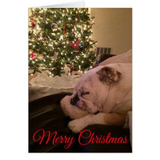 Englische Bulldogge, die Weihnachtskarte träumt Karte