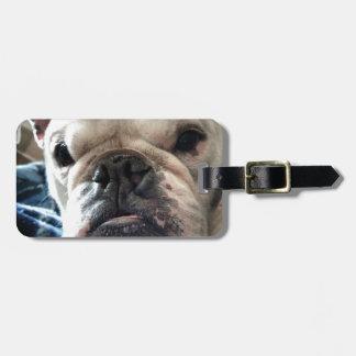 Englische Bulldogge Gepäckanhänger