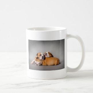 Englische Bulldogge Schlafens Kaffeetasse