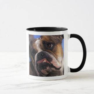 Englische Bulldogge Tasse