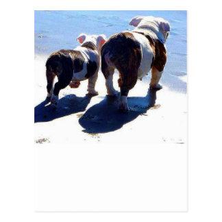 Englische Bulldogge und Welpe Postkarte