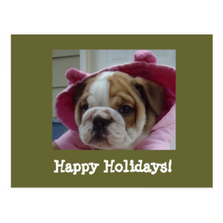 Englische Bulldoggen-frohe Feiertage Postkarten