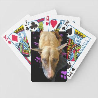 Englische Bullterrier-Karten Pokerkarten