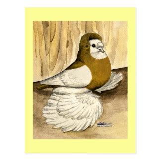 Englische Trompeters-Gelb-Elster Postkarte