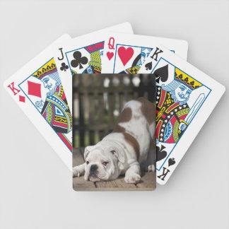 Englischer Bulldoggen-Welpe Bicycle Spielkarten