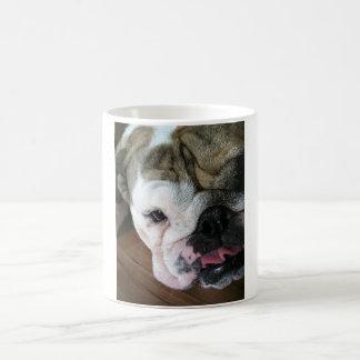 Englischer Bulldoggen-Welpe Kaffeetasse