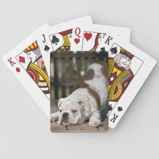 Englischer Bulldoggen-Welpe Spielkarten