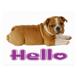 Englischer Bulldoggen-Welpen-Hund - hallo lila Postkarte