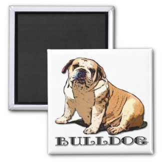 Englischer Bulldoggenmagnet Quadratischer Magnet