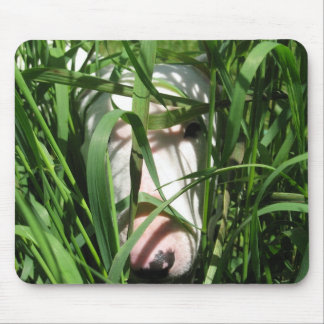 Englischer Bullterrier, der im Gras sich versteckt Mauspad
