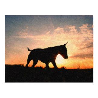 Englischer Bullterrier u. Sonnenuntergang, Postkarte
