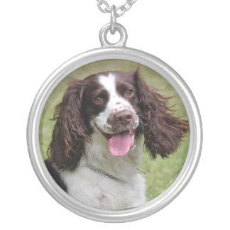 Englischer Springerspaniel-Hundeschönes Foto, Versilberte Kette