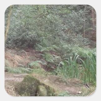 Englisches Waldland Quadratischer Aufkleber