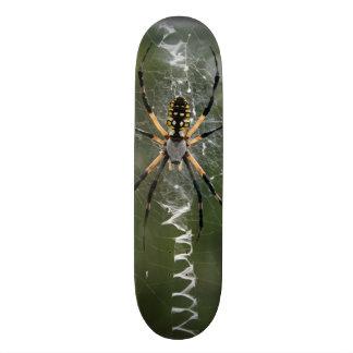 Enorme Spinne/Gelbu. SchwarzesArgiope 20,1 Cm Skateboard Deck