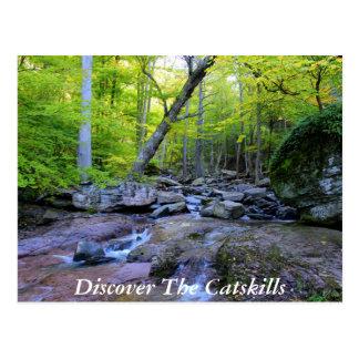 Entdecken Sie das Catskills 5 Postkarte