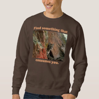 Entdeckung etwas sweatshirt