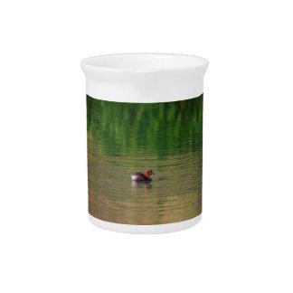 Ente des kleinen Grebe in züchtendem Gefieder Krug
