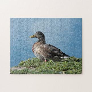 Ente durch das Wasser-Puzzlespiel Puzzle