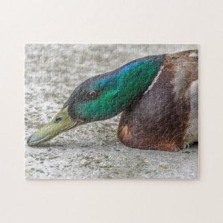 Ente herauf nahes Fotopuzzlespiel Puzzle