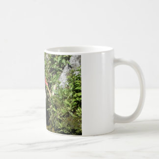 Ente Kaffeetasse