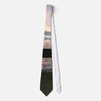 Enten auf dem Wasser Krawatte