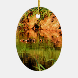 ENTEN IM WASSER QUEENSLAND AUSTRALIEN KERAMIK ORNAMENT