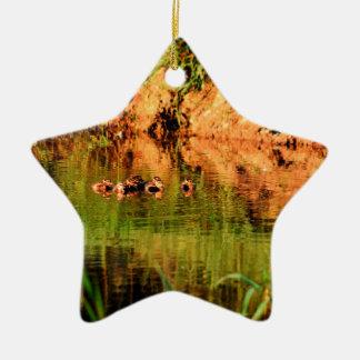 ENTEN IM WASSER QUEENSLAND AUSTRALIEN KERAMIK Stern-Ornament