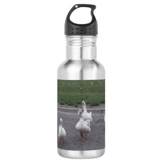 Enten-Wasser-Flasche Trinkflasche