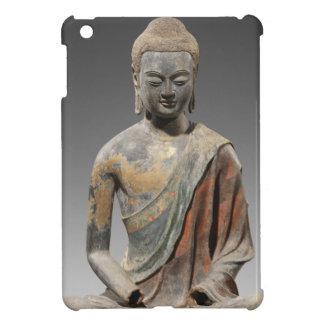 Entfärbte Buddha-Skulptur - Tang-Dynastie (618) iPad Mini Hülle