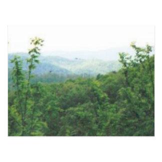 entfernte Ansicht smokies #70 Postkarte