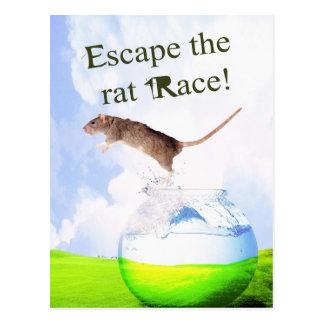 Entgehen Sie dem Ratten-Rennen! Postkarte