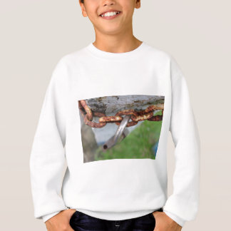 entriegelt sweatshirt
