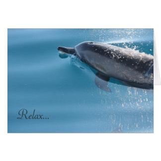 Entspannen Sie sich Delphin Karte