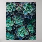 Entspannende grün-blaue saftige Kaktus-Pflanzen Poster